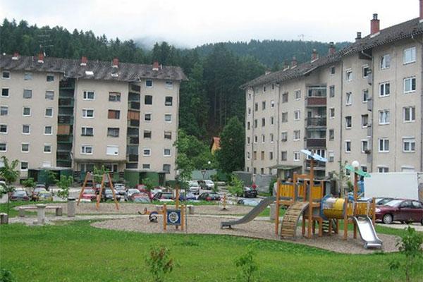 2009_mezica_leska_1.jpg
